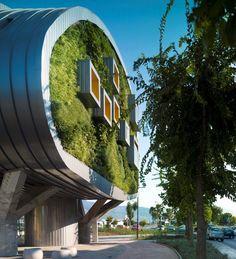 Озеленённое здание муниципалитета в Испании | Хвоя