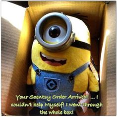 YOUR ORDER HAS ARRIVED Louise Hopcraft, Your Independent Scentsy Director www.louisehopcraft.scentsy.ca. louhop@hotmail.ca 1-705-365-7611