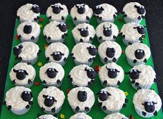 S (a friend of one of my girlies) was looking to celebrate with the office their bosses's birthday and gave me the idea of making sheep cup. Sheep Cupcakes, Easter Cupcakes, Easter Cookies, Yummy Cupcakes, Butterfly Cupcakes, Fondant Cakes, Cupcake Cakes, Cupcake Ideas, Shaun The Sheep Cake