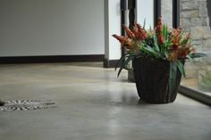 Cement Floor Covering And Industrial On Pinterest