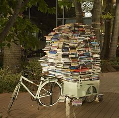 Books on Hermes Flâneur bike