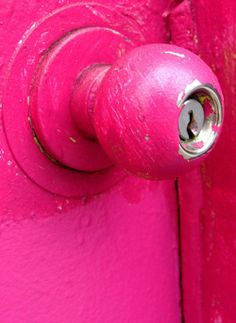 is a fuschia doorknob
