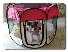 33' x 33' x 24' Pink Color 600D Oxford Portable Pet Puppy Soft Tent Playpen Dog Cat Crate Pet ** Discover this special dog product, click the image : Dog cages