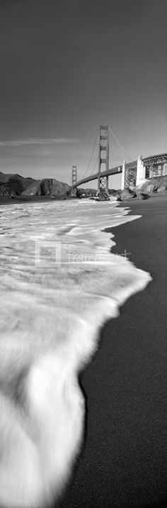 Suspension bridge across a bay in black and white, Golden Gate Bridge, San Francisco Bay, San Francisco, California, USA by Panoramic Images