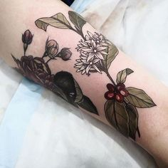Coffee plant next to rose one on Amira X Thankyou chic!