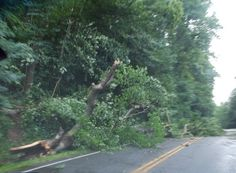 What is a Derecho? (Storms hit Ohio knocking out power to millions.)