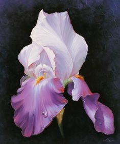 art ludivine corominas - Page 3 Iris Flowers, Exotic Flowers, Beautiful Flowers, Watercolor Flowers, Watercolor Paintings, Iris Art, Iris Painting, Iris Garden, Flower Artwork