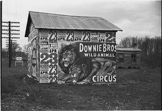 Circus ads on rural outbuilding by Walker Evans, Library of Congress Lynchburg (state?) Walker Evans, photographer 1936 -- Library of Congress Circus Poster, Poster On, Circus Circus, Antique Photos, Old Photos, Walker Evans Photography, Vintage Circus Photos, Vintage Photographs, Vintage Cameras