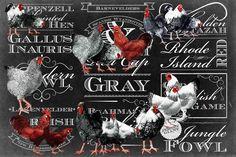 Chicken Chalk - Marmont Hill