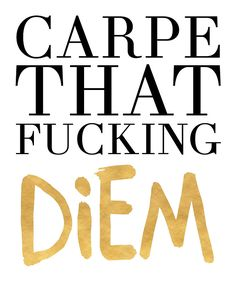 CARPE THAT FUCKING DIEM life quote -  Carpe that motherfucking diem means nothing other than just to enjoy the day, enjoy the moment and just enjoy your life. Be grateful, appreciate what you have and just live in the moment!  carpe diem carpe that fucking diem appreciate quote grateful life typography fucking hipster