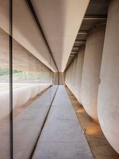 French studio Marc Barani Architectes has built a winery from ochre-coloured concrete on the Les Davids estate in southern France. Chai, Journal Du Design, Stone Blocks, St Emilion, Ground Floor Plan, Tasting Room, Large Windows, Amazing Architecture, Window Coverings
