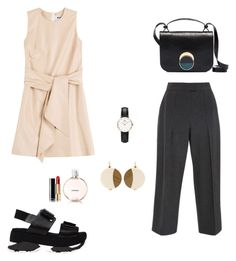"""Untitled #31"" by peterpan130395 ❤ liked on Polyvore featuring MSGM, Zac Posen, Marni, Chanel and Daniel Wellington"