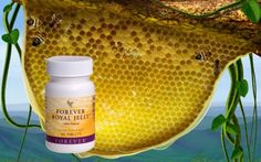 Forever Living products kuwait Natural Health and Beauty Products Forever Living Products, Aloe Vera, Natural Health, Health And Beauty, Vitamins, Royal Jelly, Nutrition, Wellness, Fruit