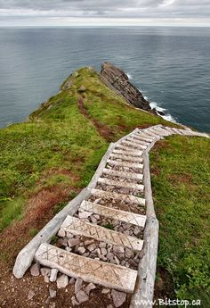 """Torbay Point on the East Coast Trail's """"The Cobbler Path"""". Newfoundland Canada, Newfoundland And Labrador, Ottawa, Places To Travel, Places To See, Gros Morne, Atlantic Canada, Prince Edward Island, Stairway To Heaven"""