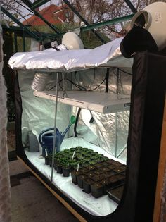 Hydroponic Grow Tents Are A Great Idea For People With 400 x 300
