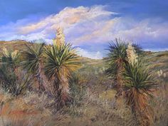 """Yucca Blossoms enhanced giclee signed 11"""" x 14"""" matted"""