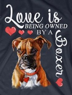 """Explore our site for additional information on """"boxer pups"""". It is actually an excellent place to learn more. Der Boxer, Boxer Bulldog, Boxer Puppies, Boxer Rescue, Boxer And Baby, Boxer Love, I Love Dogs, Puppy Love, Cute Dogs"""