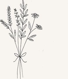 Botanical wild flower bouquet illustration by Ryn Frank – – Botanical wildflower bouquet illustration by Ryn Frank – – Types Of Photography, Bullet Journal Art, Bullet Journal Inspiration, Doodle Drawings, Easy Drawings, Easy Doodle Art, Flower Doodles, Line Art, Sketches