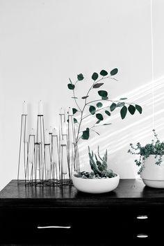 Minimal Seasonal Decorating with Eucalyptus | thevedahouse