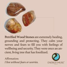 Petrified Wood Stones are extremely healing, grounding and protective. They help to calm your nerves and fears, replacing them with feelings of wellbeing and security. They were once an ancient, living tree that has fossilized. #petrifiedwood #wood #healing #crystals #stones