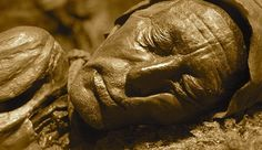 """theoddcollection: """"The Tollund Man is the naturally mummified corpse of a man who lived during the century BCE, during the period characterised in Scandinavia as the Pre-Roman Iron Age. Tollund Man, Chris Wright, Mummified Body, Iron Age, Interesting History, Guy Pictures, Art Lesson Plans, Man Photo, History Facts"""