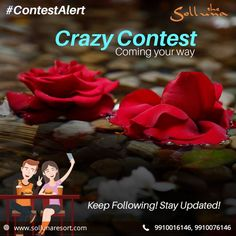 The Solluna is back again & this time with an exciting contest. Keep following for more details on the contest.  Loads of fun coming your way! #TheSollunaResort #Contest #StayTuned #Corbett #Luxuryexperience #ResortsinCorbett #CrazyContest #Contest