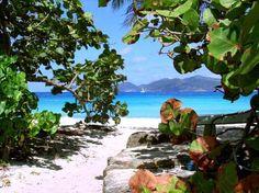 Smuggler's Cove-Tortola, BVI...