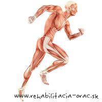 beh bolest X rehabilitacia Orac