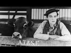 Buster Keaton: Go West (1925) #cinema #busterkeaton #ioelavacca #publicdomain
