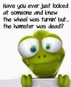 Funny Hamster Wheel Turning Dead Joke Meme Picture