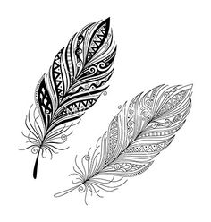 Peerless decorative feather vector on VectorStock