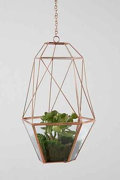 Magical Thinking Hanging Copper Cocoon Terrarium - Urban Outfitters