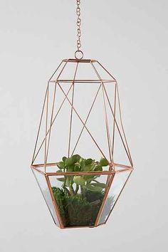 Pretty hanging terrarium in copper.