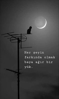 Her şeyin farkında olmak baya ağır bir yük. Words To Describe People, Mood Quotes, Life Quotes, Poetry Wallpaper, Cat Wallpaper, Good Sentences, Story Instagram, English Quotes, Meaningful Words