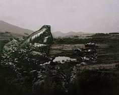 Sepetinga, 2009, Inkjet on paper, 33 x 27 cm