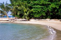 Playa Chiquita near Cahuita Beach http://american-european.net/listing-casa-sararo-4052.html