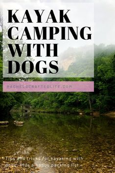 Kayak Camping with Dogs: Packing List and Tips – Rachel's Crafted Life Kajakkamperen met honden: paklijst en tips – Rachel Crafts Life Kayak Camping, Camping Packing, Camping List, Camping Checklist, Camping Hacks, Backpacking Gear, Hiking Gear, Camping Dogs, Vacation Checklist