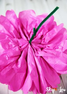 19 Best Mexican Paper Flowers Images Paper Flowers Tissue Paper