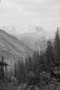 Scapegoat mountain Bob Marshall Wilderness Montana The Last Best Place