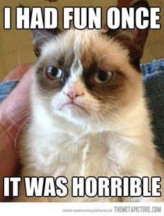 Meet Grumpy Cat… this makes me laugh so hard when I look at it haha