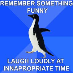 Did this in the middle of a test once. Totally awkward, but the looks I got were priceless;) -- The Best Of Socially Awkward Penguin...