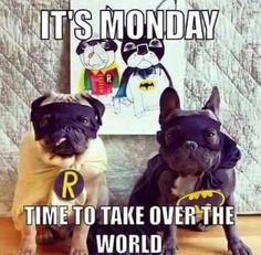 Monday's                                                                                                                                                                                 More