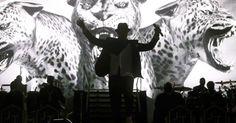 Justin Timberlake. Rock in Rio Lisboa.
