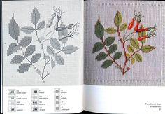Gallery.ru / Фото #1 - Cross Stitch Pattern in Color (1974) - velvetstreak