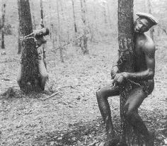 Two Blacks lynched for an alleged murder in Winona, Mississippi - April 1937 .