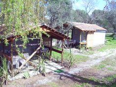 Camping Toca da Raposa - Oliveira do Hospital