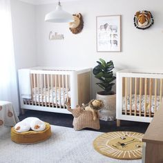 Neutral Color Scheme, Color Schemes, Twin Boys, Transitional Rugs, Grey And Beige, Beautiful Space, Cribs, Floors, Modern Design