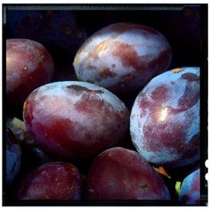 #plums #plants #plant #vegetation #macro #minimal #minimalism #closeup #detail #fragment #sergepichii