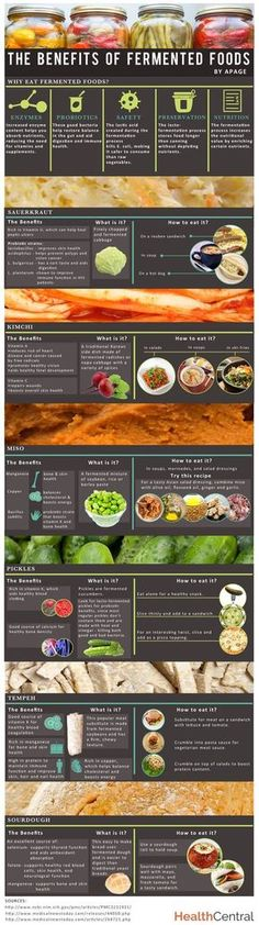 Probiotics reviews: best probiotic on the market The Benefits of Fermented Foods Infographic sauerkraut, kimchi, miso, pickles, tempeh