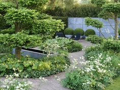 Tom's garden - my favourite garden of all time - beautiful and achievable. Sculptural, formal and informal. No lawn!